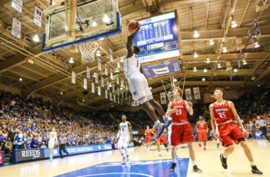 zion williamson vertical